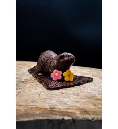 "Marmotte ""Chevallote"" Noir"